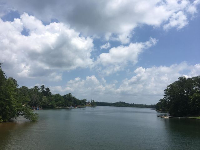 lot 61 Ridgeview Point, Alexander City, AL 35010