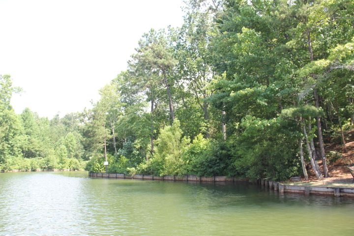 Lot 30A LIGHTHOUSE Ct, Dadeville, AL 36853