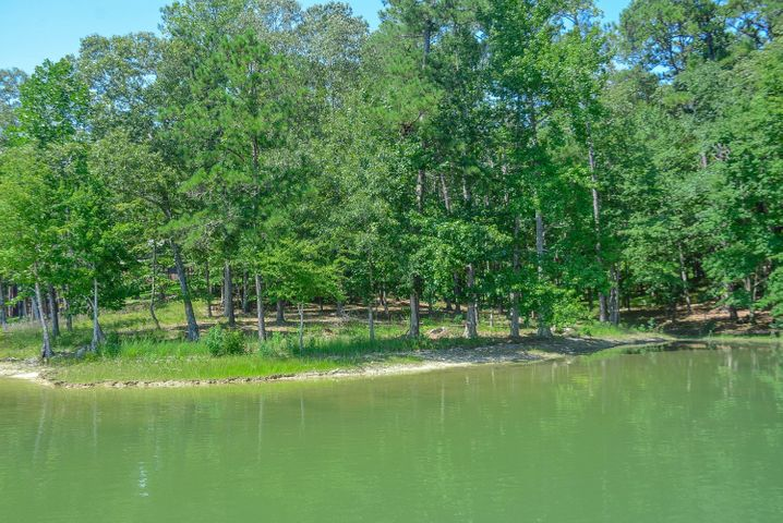 Lot 6 FAIRWINDS Cir, Alexander City, AL 35010