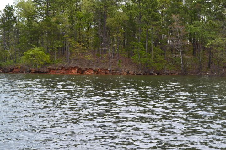 280 Peninsula Point (Lot 3), Dadeville, AL 36853