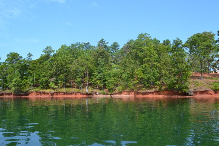 319 Peninsula Pt. (Lot 10), Dadeville, AL 36853