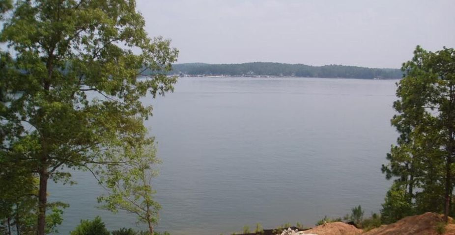 Lot 12 Silver Hills Point, Dadeville, AL 36853