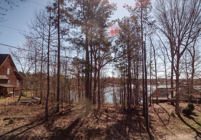 Hickory Hill Rd, Dadeville, AL 36853