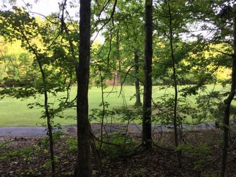 Lot 119 Hickory Way, Dadeville, AL 36853 - White Oak Landing