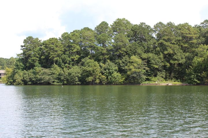 Lot 21 River Oaks Dr, Jacksons Gap, AL 36861