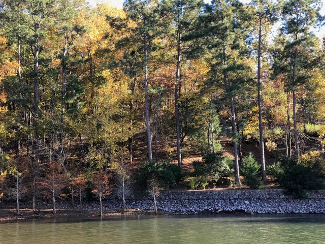 Lot 1, 2, 3 Andrews Mill Rd, Tallassee, AL 36078