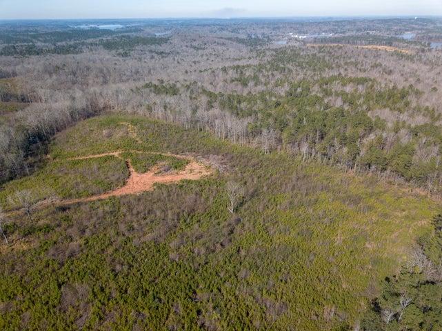 50 acres +/- on Barron Br Road, Dadeville, AL 36853