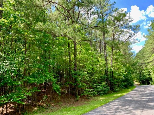 Lot 43 Willow Way North, Alexander City, AL 35010