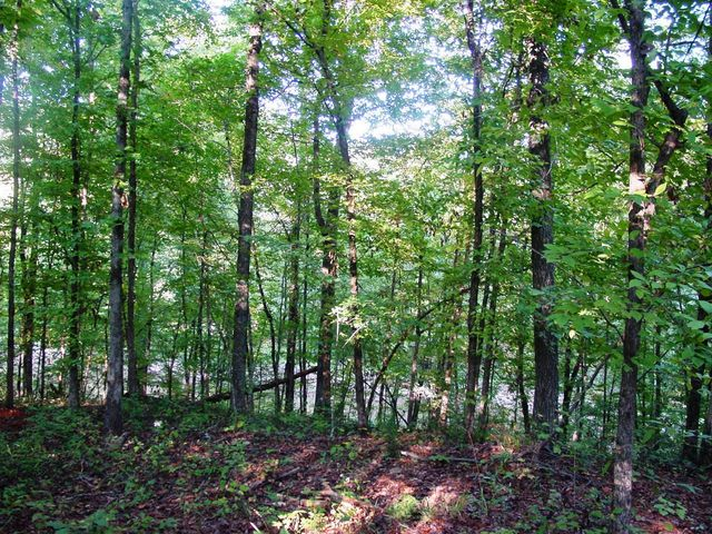 Lot 7 Waverly Ln, Jacksons Gap, AL 36861