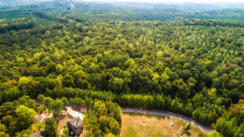 Lot 2A Long Branch Dr, Dadeville, AL 36853