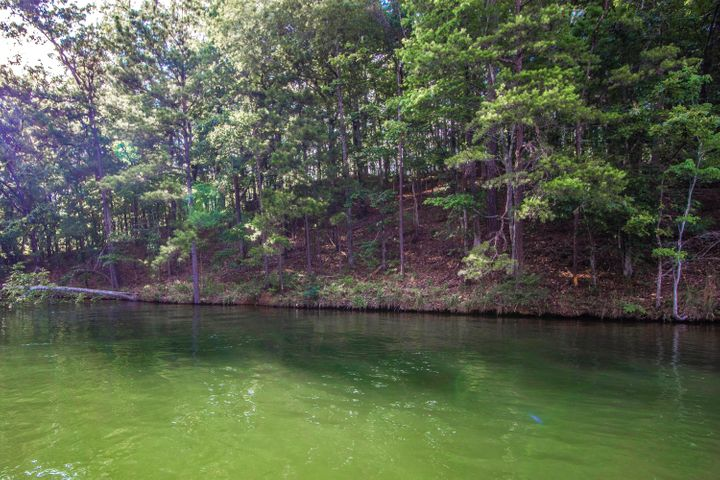 Lot 38 Kennebec on Lake Martin
