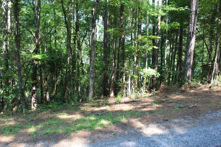 0 Quail Hollow Way, Dadeville, AL 36853