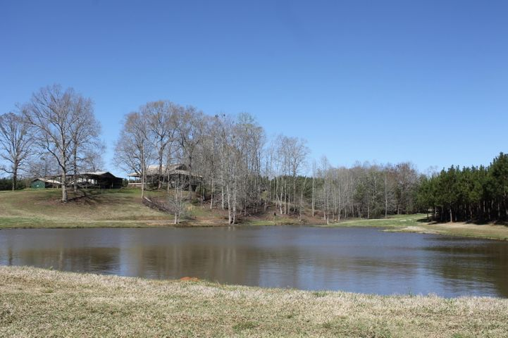 View from back of big pond looking at home