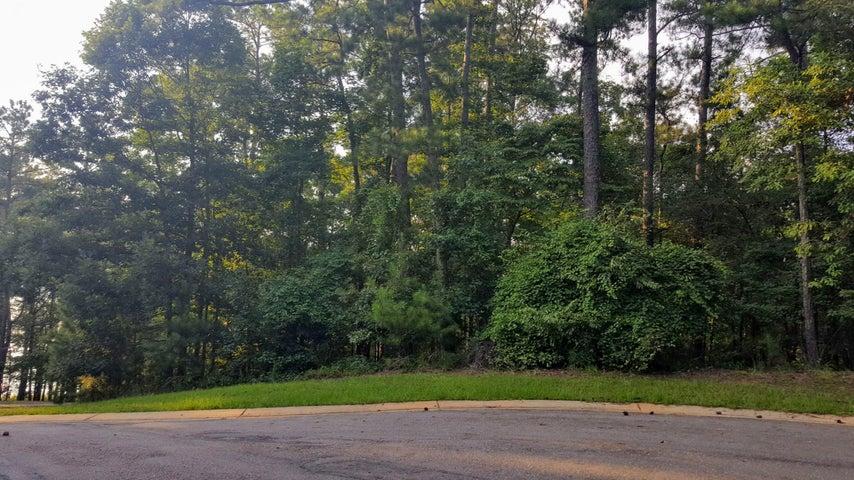 Whispering Ridge, Lot 12, Alexander City, AL 35010