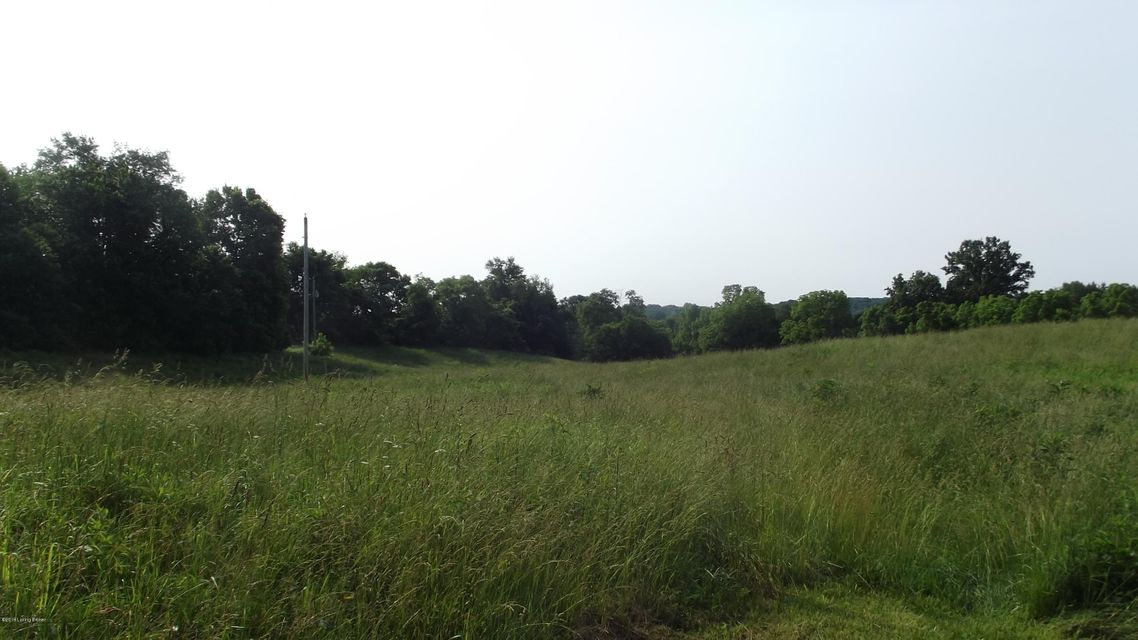98.5 +/- Acre farm on Gest Rd with frontage on both Gest Rd and Stephens Branch Rd. Property has some fencing for cattle, features crop ground, some woods, a tobacco barn with electric, and a spring fed creek.