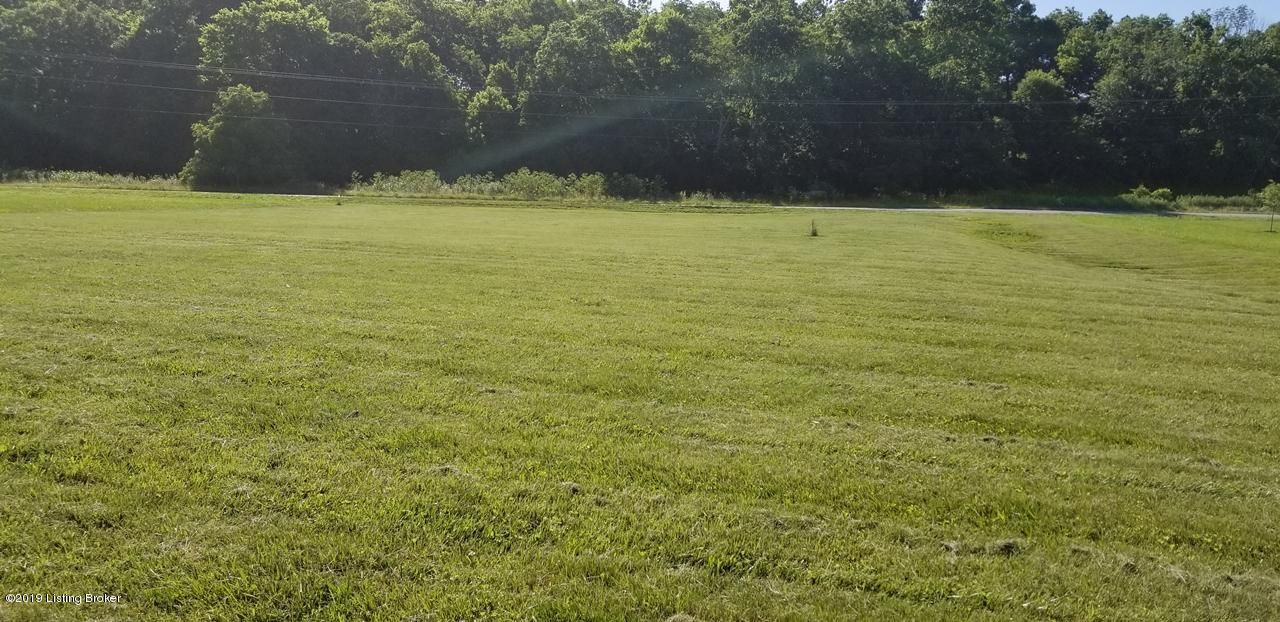 Beautiful large lot in the Orchards of Plumb Creek subdivision. Located in Elk Creek close to the Jefferson County line. This lot is great for a side or front walkout, very peaceful setting overlooking Plumb Creek.  The front of this lot is in the 100 year flood zone (see attached BFE survey). However there is a building area out of the flood zone.  We also have a septic evaluation and it is good.  This is the perfect location for your new home.