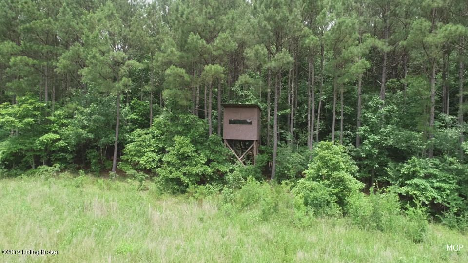738 acres of Prime hunting ground in the heart of Western Kentucky, The property feature 30 plus acres of Kentucky Lake frontage with great views for a hunting lodge or home site overlooking the stunning view of Kentucky Lake. The property has a number of food plots and stands already on the property. This property has produce great line of bucks with 15 Pope & Young Bucks and 3 Boone and Crockett Bucks harvested off this property.  The property has made it on The Outdoor Channel & times with 5 harvest by the likes of Craig Morgan and Brenda Valentine. The property has been manage with a small outfitting business only doing a limited number of hunts a season. The property would be perfect for a outfitting business or hunt club. The property also has a 4 bedroom 2 bath Double wide.