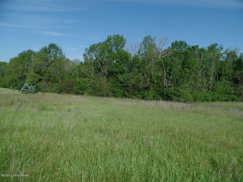 One of a kind opportunity with privacy, seclusion.  Last open lot available in Hunt Country Estates to build your dream home.  Approximately 1-2 acres cleared with the rest of the lot wooded and fall away at the end of a cul-de-sac.  You will love the great views of the beautiful countryside and wildlife. Enjoy this country setting while being only minutes from schools, shopping, restaurants, Parklands and the Gene Snyder. Neighborhood has fiber internet available through All Points Broadband allowing you to work remotely in the peace and serenity of country life.