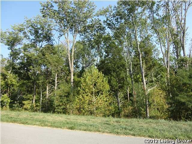7105 Colton (Lot 375) Rd, Crestwood, KY 40014