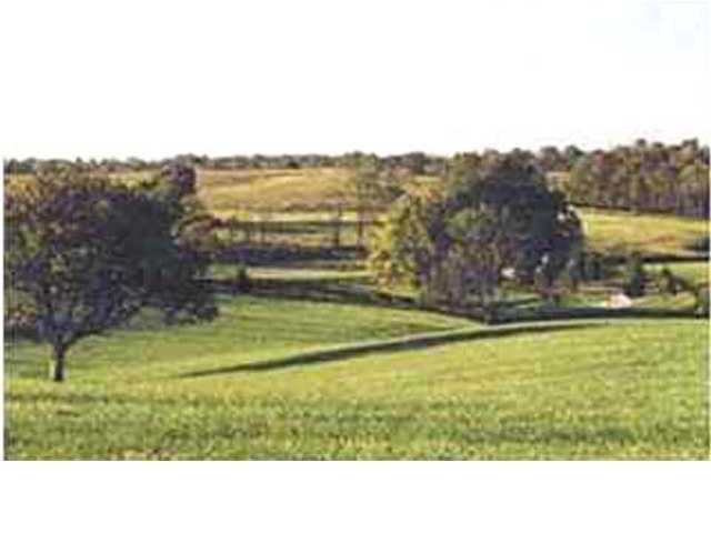 The gently rolling hills of this awesome 202 +/- acre property are located in the unique community of L'ESPRIT, Oldham County, Kentucky.