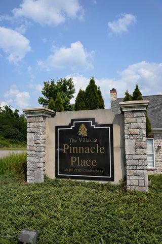 4425 Pinnacle View Pl