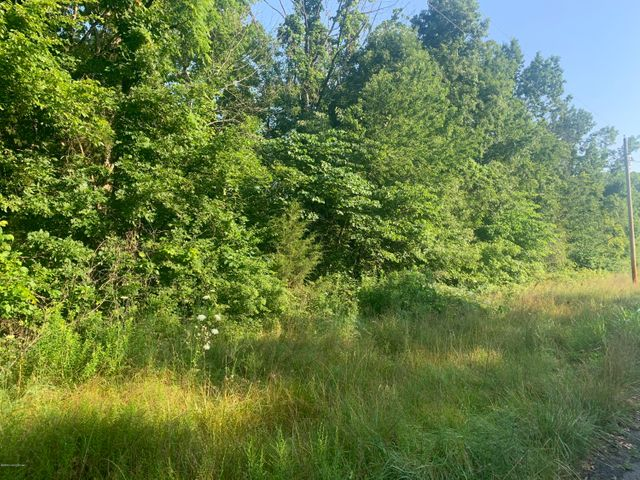 Lot 59 Hickory Woods