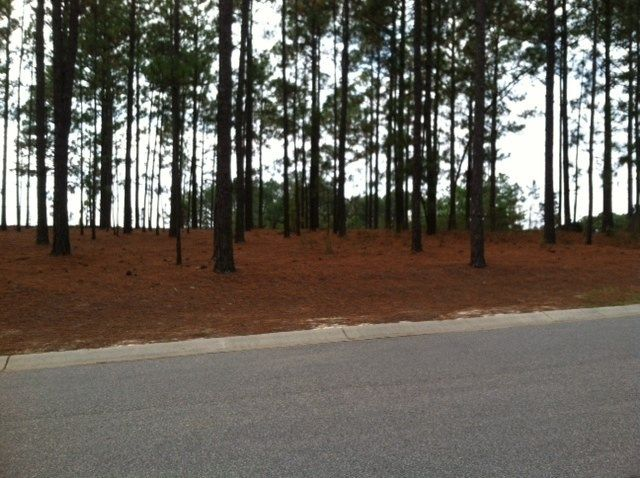 110 Kings Ridge Court, Southern Pines, NC 28387