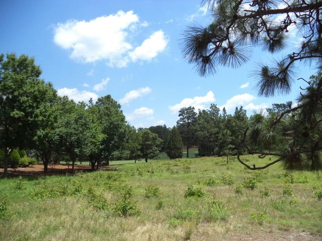 Large golf view lot facing northeast / ideal morning sun