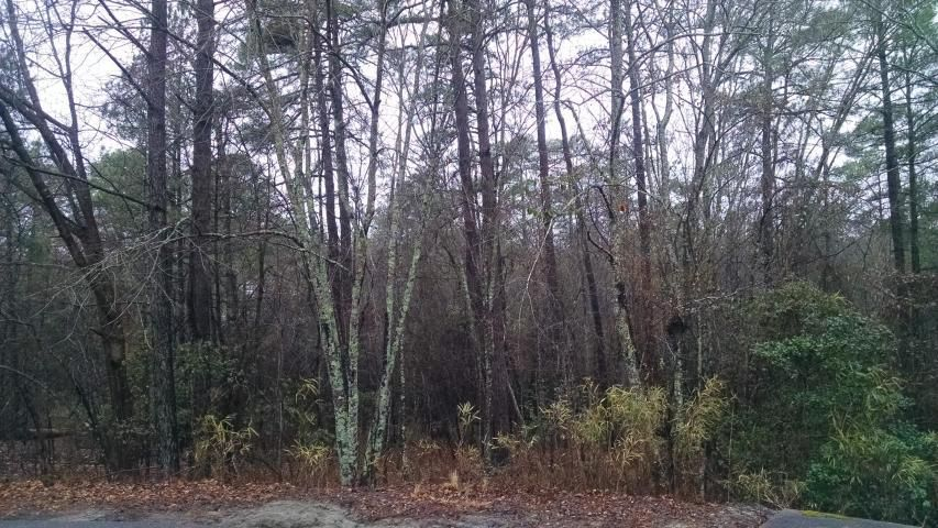 25 Greenville Lane, Pinehurst, NC 28374