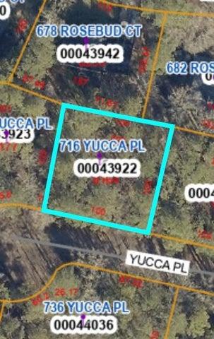 716 Yucca Place, Vass, NC 28394