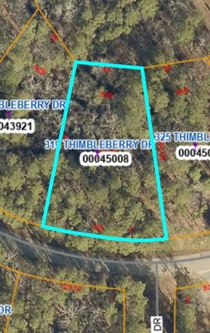 319 Thimbleberry Drive, Vass, NC 28394