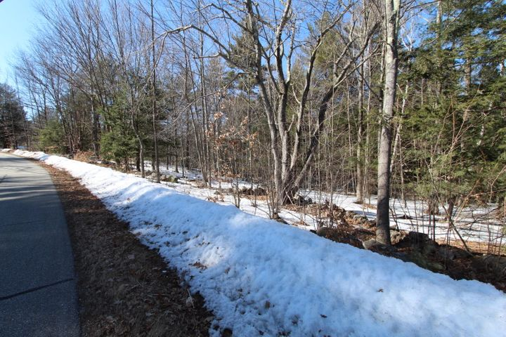 Welchs Lane- Rock walls and gentle sloping land make this perfect to build on.