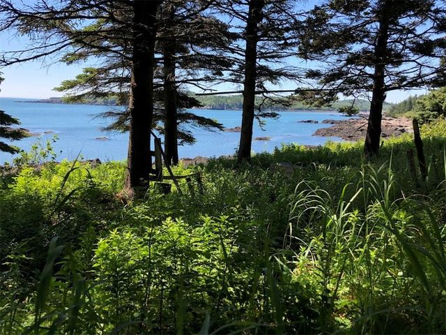 Lot 98-8 Eastern Head Road, Trescott Twp, ME 04652