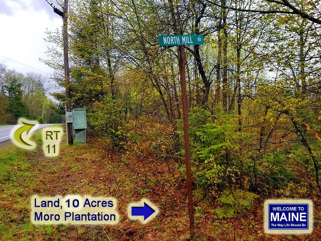Lot 21A S Mill Road, Moro Plt, ME 04780