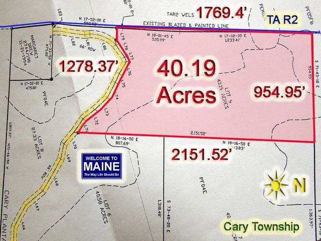 Lot 4-9 Off Estabrook Road W, Cary Plt, ME 04471
