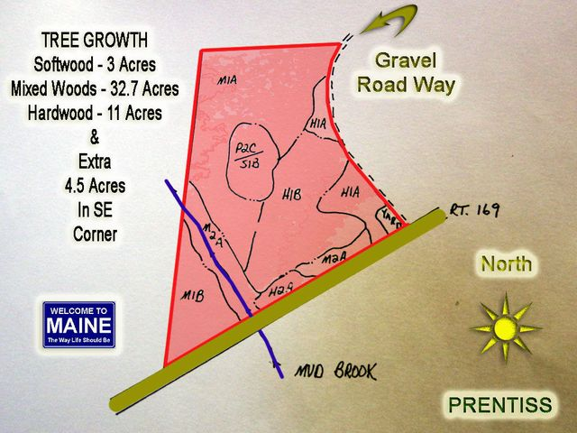 Lot 4,4.1 RT 169 Road, Prentiss Twp T7 R3 NBPP, ME 04487