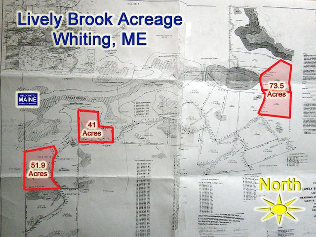 2,3,16,18 Lively Brook Acreage, Waite, ME 04492