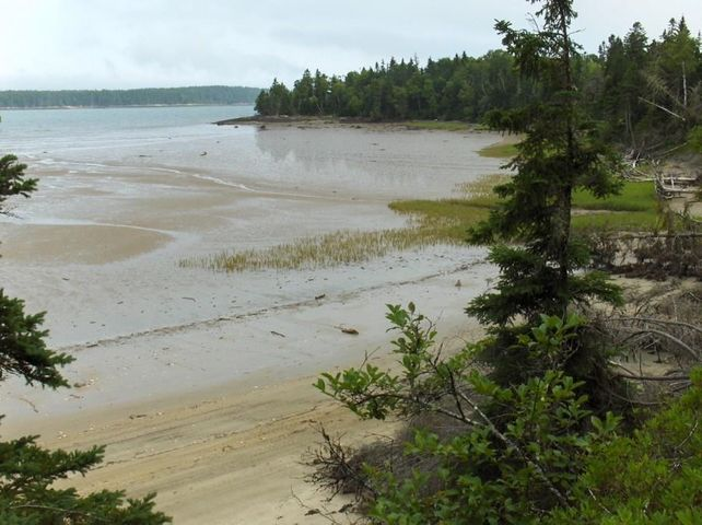 Lot 80 Ficketts Point Road, Milbridge, ME 04658