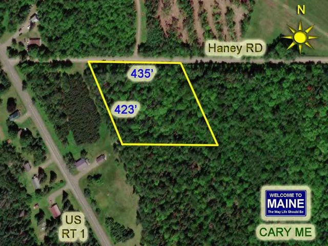 Lot 23 Mill Road E, Cary Plt, ME 04471