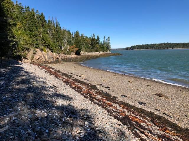 0 Clamshell Cove Road, Machiasport, ME 04655