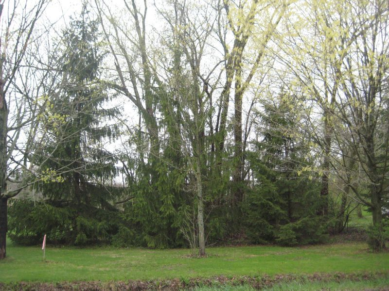 .38 Acre County Road C,Plymouth,Wisconsin 53073,Vacant Land,County Road C,1309507