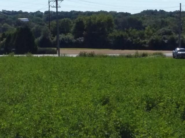 Lt3 County Road E, Watertown, Wisconsin 53094, ,Vacant Land,For Sale,County Road E,1569603
