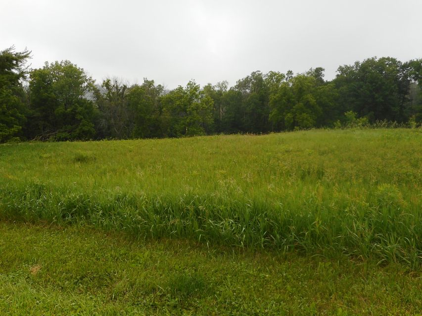 61904 Badger Ridge Rd<br /> Ferryville,Crawford,54628,Vacant land,Badger Ridge Rd,1590007