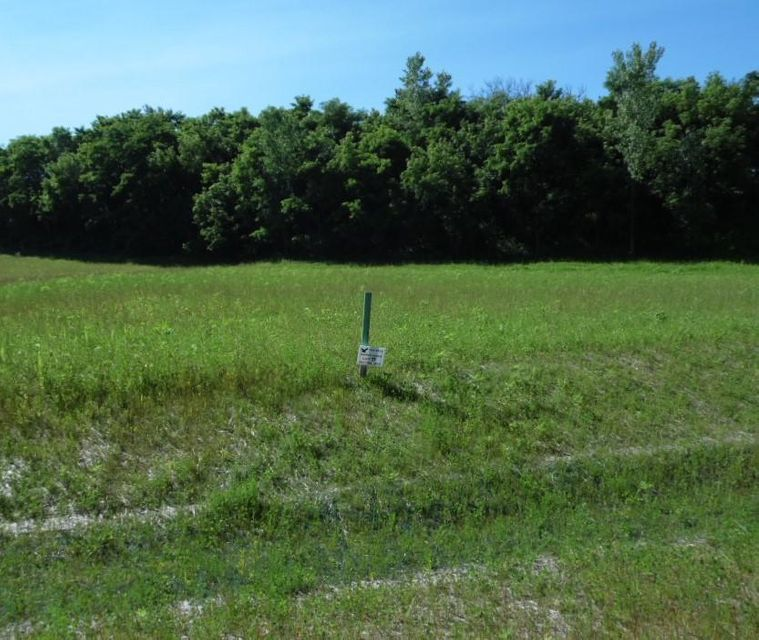 Lot 11 Rookery Rd,Delafield,Wisconsin 53072,Vacant Land,Rookery Rd,1598459