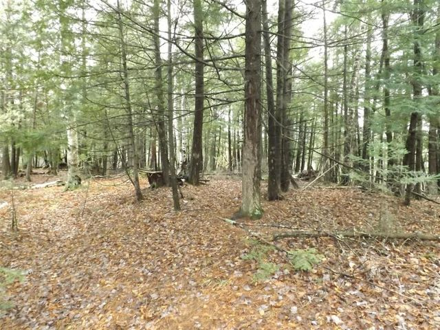6 Acres County Rd RR, Wagner, WI 54177