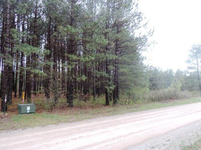 Lt 1 Forest Rd, Stephenson, WI 54114