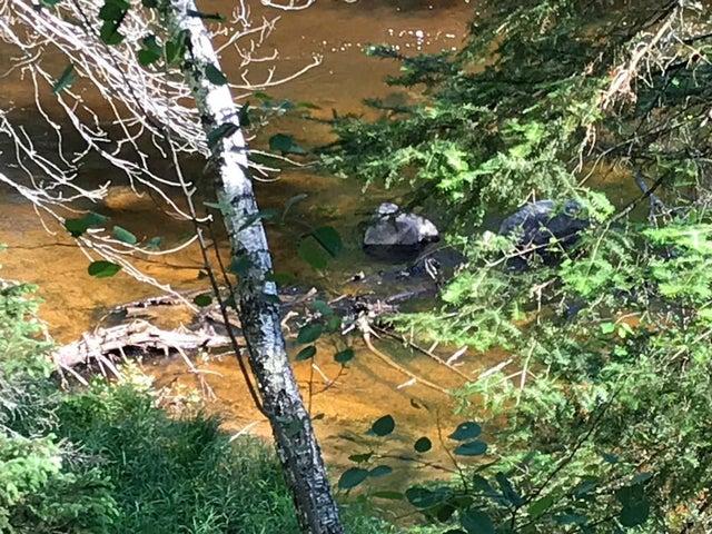 W10754 Whiskey Creek Ln, Dunbar, WI 54119