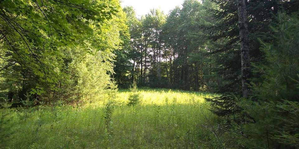 LT 4 Pines Rd, Middle Inlet, WI 54177