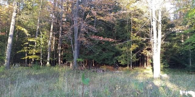 LT0 Maple Beach Rd, Middle Inlet, WI 54177