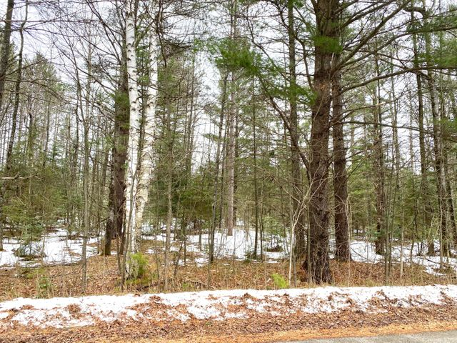 Lt0 Peterson Rd, Wagner, WI 54177